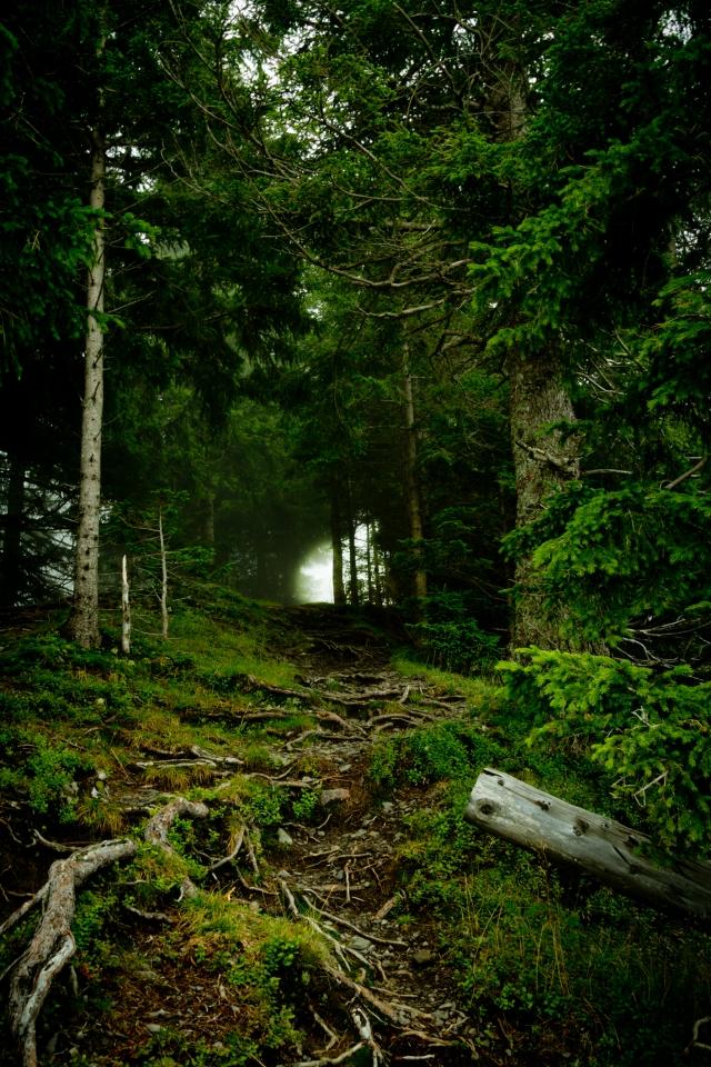 08-10_Wanderung zur Alpspitz_3-10